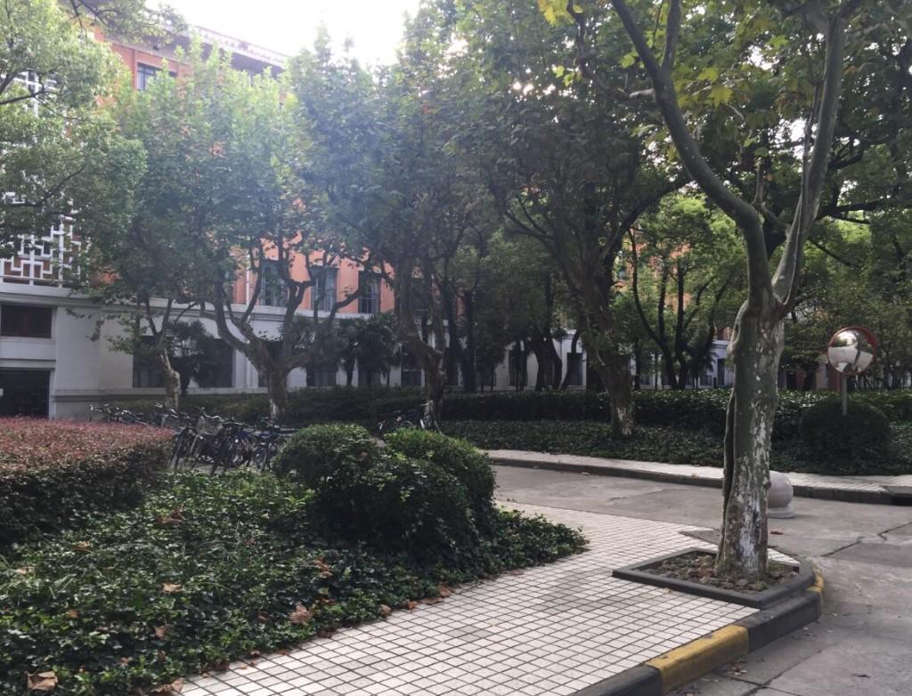 xiandaihua02
